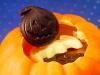 4_thomas_haas_pumpkin3069