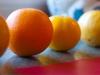 70_citrus