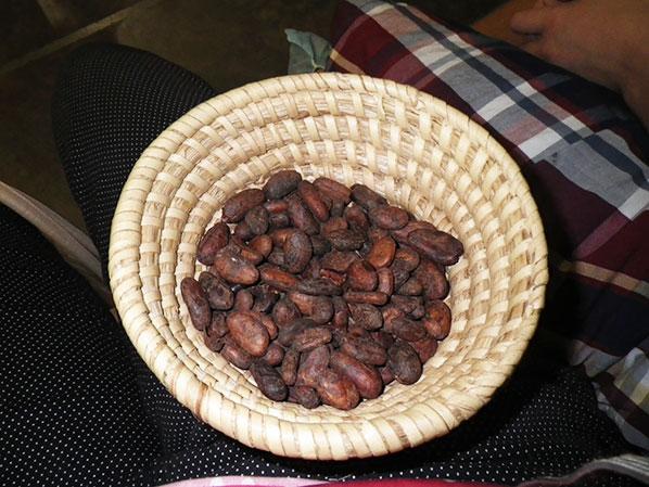 134_beans-basket